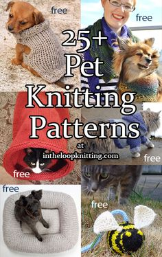 Pet Knitting Patterns Knitting patterns for your favorite animal companions including dog and cat sweaters, beds, toys, a Knitted Dog Sweater Pattern, Dog Coat Pattern, Knit Dog Sweater, Knitted Cat, Animal Sweater, Knitting Patterns For Dogs, Sewing Patterns, Pet Sweaters, Cat Cave