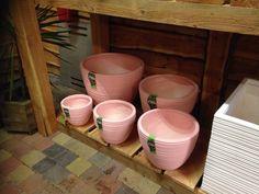 Nieuwe collectie E'lite buiten en binnen potten(winterhard) In verfrissende kleuren en geheel volgens de nieuwste trends!