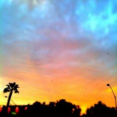 Sunset - Los Angeles