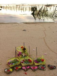 bali - Balinese sea offering . All of these offerings are so beautiful and find them every where and on the streets or in the garden by the little temples.