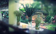 arreglos florales eucalipto