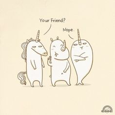 Mr.Unicorn and Mr.Narwhal do not like mr. Rhino