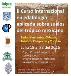 II Curso de verano en edafología aplicada sobre los suelos del trópico mexicano.