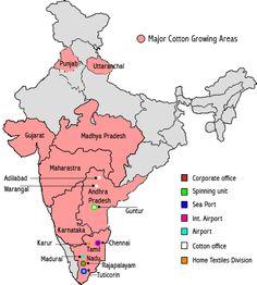 Cotone: India e Pakistan non bastano a sostenere i prezzi - Materie Prime - Commoditiestrading