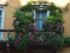 Balcony decorating with flowers and plants are a nice way to create beautiful, eye catching blooming balcony designs that make streets look festive and joyful
