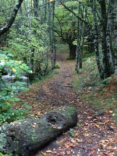 Ruta de la Cascada de la Seimeira, santa Eulalia de Oscos