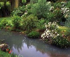Giardini Botanici di STIGLIANO - Canale Monterano