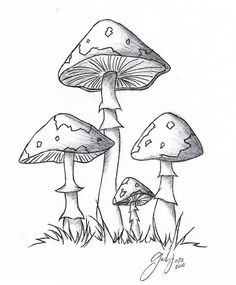1 lil 2 lil 4 lil mushrooms by ChibiPandaMonster on DeviantArt Mushroom Paint, Mushroom Drawing, Art Drawings Sketches, Easy Drawings, Hippie Art, Doodle Art, Oeuvre D'art, Painting & Drawing, Art Projects