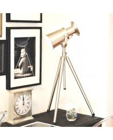 $120 Industrial Style Silver Floodlight Lamp- adjustable height