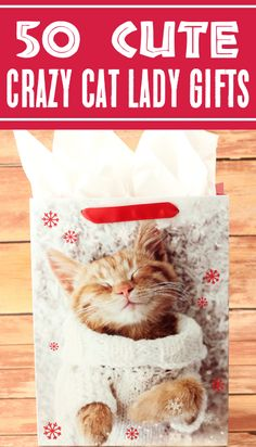 Cat Lover Gifts! Funny Gift Ideas for Crazy Cat Ladies! From inexpensive hilarious gifts to luxury gifts they'll LOVE, these are the perfect gifts for your cat obsessed friend! Here's what she really wants... Cat Lover Gifts, Cat Gifts, Cat Lovers, Crazy Cat Lady, Crazy Cats, Life Hacks Every Girl Should Know, Grandpa Gifts, Luxury Gifts, Popular Pins