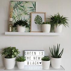 Bom dia! Mais uma inspiração para estimular você a criar um cantinho verde em casa. Misture vasos com plantinhas e quadros com a temática botânica.: Pinterest #revistacasaclaudia #decor #decoration #decoração #home #house #casa #homedecor