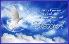 Happy passover greeting cards jewish holiday greetingsideas happy passover greetings wishes cards hebrew shalom wishing you all joy many blessings at biblical festival passover day pesach or passover is a holy m4hsunfo