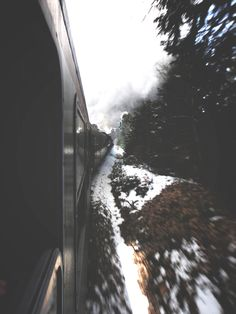 Glimpses of scenery A Well Traveled Woman, Train Rides, Train Trip, Train Journey, Train Travel, By Train, Autumn Trees, Marvel Cinematic Universe, The Great Outdoors
