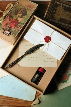 """SILVERY PLUME PEN & INK KIT! For the """" guest book"""" I want them to write with an old fashioned feather pen and this is really cool."""