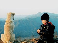 #nepal #Himalaye #annapurna #dogs #friend #mountains #animals #nature #travel #pet #love #