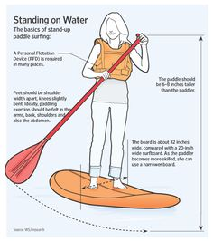 Surf's Up: The Rise of Stand-up Paddle Boards    #Paddleboardshop #paddleboard #paddleboarding