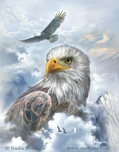 : Eagle by Fantasy-fairy-angel on DeviantArt Eagle Images, Eagle Pictures, American Flag Eagle, Native American Art, Eagle Artwork, Eagle Drawing, Eagle Painting, Creation Photo, Bald Eagle Tattoos