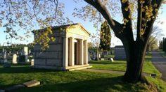 Photo Gallery – St. Bonaventure Cemetery Bonaventure Cemetery, Photo Galleries, Gallery, Plants, Planters, Plant, Planting