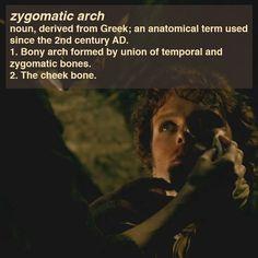 Outlander Anatomy - Fun Fact – Zygomatic Arch