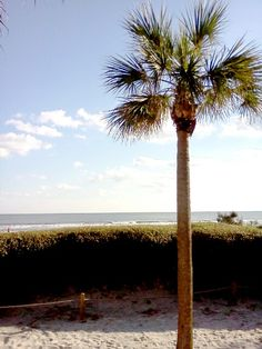 Sea pines beach club on Hilton head island south Carolina. My second home.