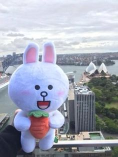 Line characters - Cony -pinned by PatriZia- Ethel Kennedy, Line Friends, Plushies, Tweety, Hello Kitty, Snoopy, Learning, Toys, Disney Characters