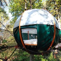 Cozy Tree Nest in France