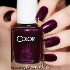 Color Club Winter Affair Nail Polish Swatch | Live Love Polish