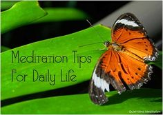 Our first FREE E-Book   ... Meditation Tips For Daily Life .. sign up www.quietmind.com.au