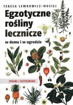 My Roots, Beauty Care, Deep, Garden, Books, Food, Liquor, Garten, Libros