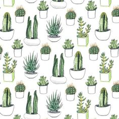 watercolour cacti and succulents #pattern