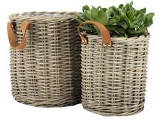 Shop the selection of plant pots, flower pots and window boxes in-store and online. Choose from large planters, hanging planters and balcony plant pots. Shop in-store and online. Laundry Basket, Wicker Baskets, Inspiration, Student, Home Decor, Garden, Shop, Products, Balcony