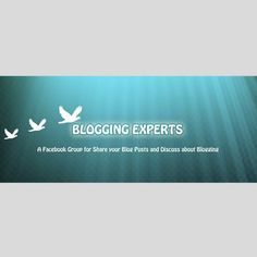 Blogging Expert.