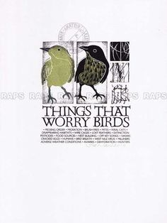 """What worries birds - """"I wish I were a bird so I could just fly away."""" LOL no you don't."""