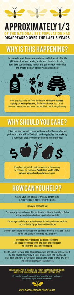 Take a look at this #infographic to learn more about the importance of #honeybees. #ecofriendly