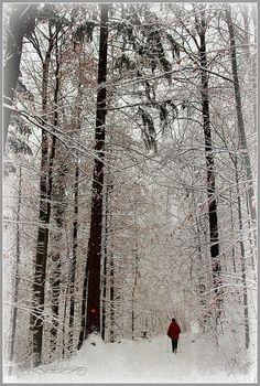 winter. I miss............