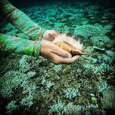 Who said palm trees can't go underwater? #cabanalife #aquarium #instafish #instagood #swim #swimming #water #coral #reef #photooftheday #saltwater #beautiful #ocean #travel #vacation #visiting #instatravel #instago #instagood #trip #fun #traveling #instapassport #instatraveling #mytravelgram #travelgram #travelingram #igtravel #palmbreeze #conch #rashguard 📷@deslie.ryoko.sirena Reposted Via @ito.obs Nautical Tops, Nautical Style, Nautical Fashion, Sun Protective Clothing, Beautiful Ocean, Enjoying The Sun, Rash Guard, Beach Trip, Cabana