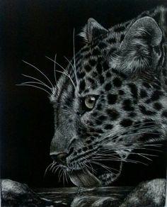 My leopard scratch board.