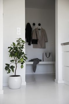 What if I opened my foyer closet with path to bedroom and could then extend bathroom into hall and toward the foyer???
