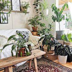 #living #room #boho #scandi #rustic #nordic #diy #decoration #style #greendecor #indoorplants #plants