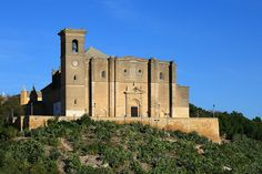 Colegia de Osuna, recientemente atribuida a Diego de Riaño. Promovida por los duques de Osuna.