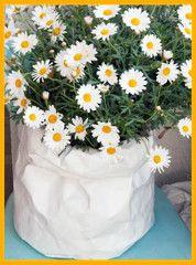 #Blumentöpfe in #Papieroptik mit Tyvek