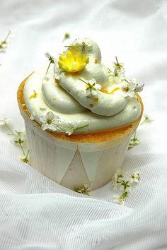 Limoncello Cupcakes! It sound delicious doesn't it? The perfect treat to celebrate the arrival of Spring.