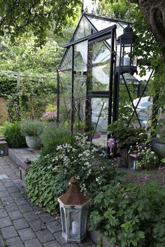 My loving home and garden