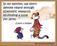 Calvin and Hobbes - In my opinion, we don't devote nearly enough scientific research to finding a cure for jerks.