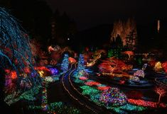 The Magic of Christmas at The Butchart Gardens Tourism Victoria, Victoria Canada, Christmas Lights, Christmas Displays, Twelve Days Of Christmas, Holiday Wreaths, Ice Skating, Gardens, Magic