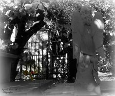 Cementerio nº 1 Valparaìso, Chile.
