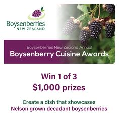 The boysenberry season is ramping up and to celebrate, we are delighted to announce our first ever Boysenberry Cuisine Awards! $1,000 to be won in each of the following categories • Restaurant • Cafe and Commercial Kitchen • Made at Home Download an entry form via our linkin.bio or via the news section of our website www.boysenberry.co.nz Terms and conditions apply, see entry form for details. Ends 20 Jan 2021, see entry form for submission times Commercial Kitchen, Submissive, Stuff To Do, Competition, Challenge, How To Apply, Tasty, Restaurant, Dishes