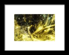 Product Framed Print featuring the photograph The Meaning by Vanessa Branton