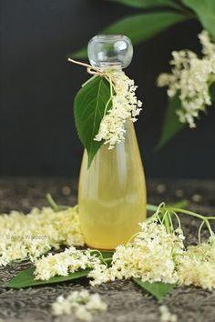 Syrop z kwiatów czarnego bzu - Wiem co jem
