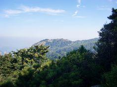 中国の方でも一生に一度は登りたいという名山。泰山に登る日です。天気もいいし、期待も高鳴ります。やはり天気は大切ですね!A splendid bird view of sunshine-covered Mount Tai.